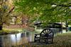A riverside rest. Mona Vale. NZ (Bernard Spragg) Tags: monavale park gardens seat parkbench avonriver christchurch restful lumixfz1000