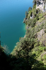 Thunersee unterhalb der Klippen bei Sundlauenen in den Berner Alpen - Alps im Berner Oberland im Kanton Bern der Schweiz (chrchr_75) Tags: mai christoph chrigu 2017 chrchr hurni chrchr75 chriguhurni schweiz switzerland suisse swiss bern svizzera berner oberland suissa kanton kantonbern hurni170510 hochformat susisa albumregionthunhochformat thunhochformat lake lago see lac thunersee berneroberland järvi 湖 sø alpensee albumthunersee