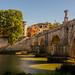 Bridges of Rome