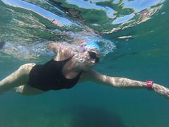 G0108040 (Visit Pilar de la Horadada) Tags: swimmers meeting point hibernismare swim natación nadar milpalmeras pilardelahoradada alicante costablanca vegabaja comunidadvalenciana quedada beach strand swimm