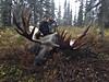 Alaska Moose and Bear Hunt - Dillingham 48