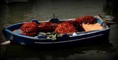 ........senza titolo (dona(bluesea)) Tags: barca boat mare sea reti nets marsala sicilia sicily