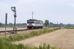 Aln 668 1119 + 1111 (railphoto) Tags: trenord nicorvo aln668 diesel automotrice treno train zug bahn rail ferrovia
