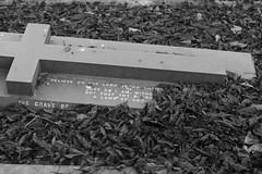 _IAW9346 (IanAWood) Tags: lbofbrent london londoncemeteries nikkorafs58mmf14g nikondf walkingwithmynikon willesden willesdennewcemetery