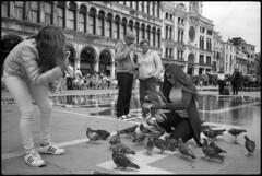 Playing with pigeons (Franco & Lia) Tags: street fotografiadistrada photographiederue venezia venice veneto piccioni pigeons piazzasanmarco analog analogico argentique biancoenero noiretblanc blackandwhite ilford fp4 nikonl35af2 bellini studional epson v500