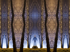 Fractal Forest (Matt Molloy) Tags: mattmolloy photography digitallymirrored symmetric fractal forest trippy matrix lightpainting night blue orange light beams trees branches grass rock reflections me myself gateway portal scifi haskinspoint seeleysbay ontario canada landscape lovelife