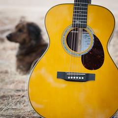 OMJM w Sophie-0368 (paul.leach72) Tags: guitar guitars sophie