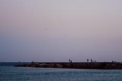 (susanagdv) Tags: barcelona beach sea people silueta siluette blue waves beautiful life libertad libre free freedom nature naturaleza