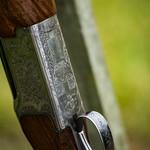 Gun Day: Details thumbnail