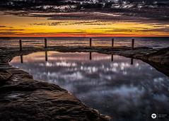 nosdwimming (The Photo Smithy) Tags: coogee ivorowe nsw southernbeaches sydney dawn rockshelf sunrise