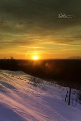 _64A1232 (Ed Boudreau) Tags: alaska alaskalandscape alaskamountains landscape landscapephotography sunflare sunset winter winterscape winterscene knikarm clouds sunsetclouds alaskasunset eagleriver usa