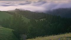 Return of the Fog (pixelmama) Tags: california fog karlthefog landscape mounttam mounttamalpaisstatepark pixelmama sunset longexposure marincounty marin millvalley