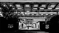 The Art of the Wuhletal Railway Station (ANBerlin) Tags: prismaapp frau woman leute people städtisch urban landschaft landscape licht lights morgens morning early infrastruktur infrastructure architektur architecture drausen outdoor struktur structure linien lines rahmen frames symmetrie symmetry ausergewöhnlich extraordinary kunstwerk artwork kunst art u5 s5 bahn zug train subway ubahn sbahn deutschland germany berlin hellersdorf marzahn wuhletal bahnsteig platform bahnhof station railway biancoenero noiretblanc sw bw schwarzweis blackwhite anb030 shotoniphone iphotography iphonography 6splus iphone6s iphone apple