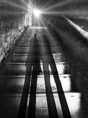 on a mote of dust suspended in a sunbeam (lorenka campos) Tags: shadowstory portals stairs staircase blackandwhite feelinginsignificant shadows mystical stars universe carlsagan cosmos