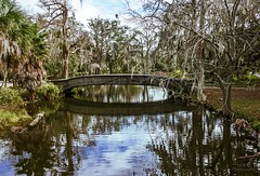 Reflections (Maria Manuela Photography) Tags: city colors photography travel architecture design perspective contempory geometry texture tourism traveltourism traveldestination travelandtourism neworleans louisiana citypark bridge oldbridge park water lake trees cypress cypresstrees reflections
