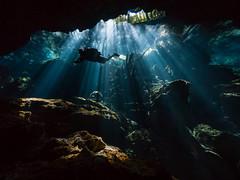 Cenote Visitor (altsaint) Tags: 714mm chacmool gf1 mexico panasonic cavern caverndiving cenote scuba underwater