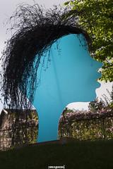1 Profilo trasparente (MarcoAgustoniPhotography) Tags: trentino levico terme esposizione trasparenze