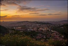 Amanecer primaveral (antoniocamero21) Tags: amanecer primavera flores cielo color foto sony ciudad barcelona catalunya