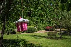 Mother's Day Piñata (7austins) Tags: mothersday present piñata funny non breakable