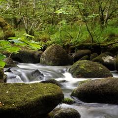 River Bovey (Karen Warren1) Tags: river riverbovey woodland rocks boulders dartmoor devon walk1000miles2017 walk1000miles worldinneedwalkersimplesitecom green