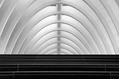 altar (Fotoristin - blick.kontakt) Tags: liègeguillemins liège lüttich station architecture santiagocalatrava lines abstract tgv thalys stairs blackandwhite curves altar fotoristin