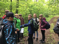 Waldjugendspiele2017-030