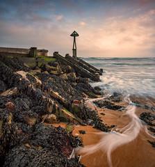 'See Weed' (AKG37) Tags: seaweed sea ocean water sky groyne beach coast sand decay landscape waterscape seascape