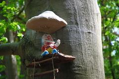 20170517-143758LC (Luc Coekaerts from Tessenderlo) Tags: bel belgium dassenaarde diestschaffen vlaanderen cc0 creativecommons 20170517143758lc coeluc a20170517kvlvasdonk kvlvdeurne wak asdonk landart public object art kabouter gnome nobody