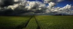 Green (cofarrell25) Tags: may landscape landscapes landing ireland sky summer summerweather land green blue cloud clouds cloudscape dublin