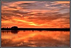 Volviendo a casa... (Jose Roldan Garcia) Tags: luz libre libertad laguna nubes naturaleza natural anochecer colores cielo aire agua aves reflejos humedal horizonte mancha momentos
