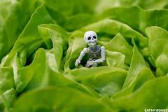 Mounette's garden (EatMyBones) Tags: fgurine garden miniature nature poseskeleton rement skeleton toy toyphotography vegetable