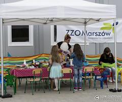 """adam zyworonek fotografia lubuskie zagan zielona gora • <a style=""""font-size:0.8em;"""" href=""""http://www.flickr.com/photos/146179823@N02/34627645682/"""" target=""""_blank"""">View on Flickr</a>"""