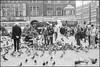 1991-05-15-0008.jpg (Fotorob) Tags: dieren wegenwaterbouwkwerken plein weg city noordholland nederland analoog amsterdam tafereel holland netherlands niederlande