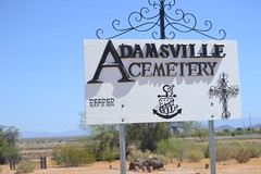 DSC_0720 (tomchatt1) Tags: adamsville cemetery florence graves