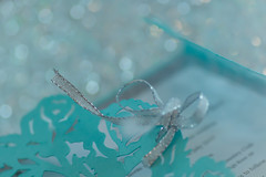 20:52 Sparkle! – Shoot what inspires you this week, just make sure it sparkles. (hey ~ it's me lea) Tags: sparkle bokeh weddinginvitation 52weekproject