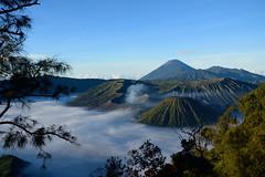 Volcano Mount Bromo, Java, Indonesia (Henk Steetzel) Tags: bromo indonesia landschap vulkaan morning sunrise java malang clouds nature volcano d5300