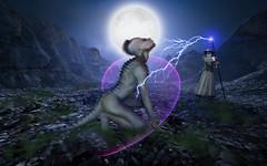 Lizzard Wizard (pegazuz66) Tags: background photoshop foto manipulatie timkwee pegazuz66 photomanipulation abobe adobephotoshop bewerking