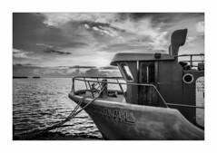 IMG_7791 (Carlos M.C.) Tags: holbox mañana madrugada despertar blanco negro color barco bote lancha ferry camarote rojo azul salvavidas amarre cuerda botes