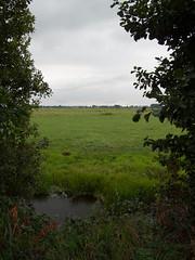 2009-08-25-0008.jpg (Fotorob) Tags: water nederland polder utrecht holland netherlands niederlande breukelen