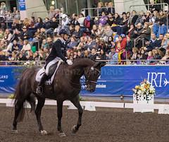 17429_Sydney_CDI_GPFS_0110.jpg (FranzVenhaus) Tags: athletes dressage australia equestrian riders horses ponies rug siec nsw sydney newsouthwales aus