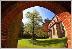 Klostergarten (Rolf Brecher) Tags: havelberg dom kloster samyang1358mm fisheye ultrawide baum tree grün bogen