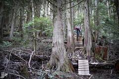 Double Ladder (Jeremy J Saunders) Tags: vedder mountain mountainbiking mtb sport extreme jeremyjsaunders jjs d800 nikon ladder stunt forest bc canada chilliwack trees
