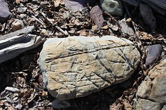 Written in Stone (Rock Water) Tags: inscribed rock