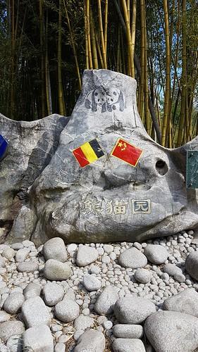 Belgique - Chine   Panda Géant