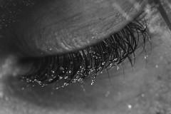 Misty lashes (Travellin'Girl) Tags: macro monday eye mm