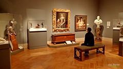 An Art Lover (FrogLuv) Tags: dia detroitinstituteofarts detroitmichigan museum art inexplore