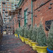The Distillery Historic District Alley (Toronto, Ontario)