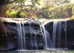 Nellie's Glen (Kaptain Kobold) Tags: kaptainkobold nsw australia robertson southernhighlands waterfall water pond pool national park flow nature scenery
