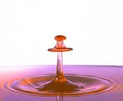 First Splash (D-Rat) Tags: watercollision water sigma50mmmacro nikon waterart collision dropcontrollerbt