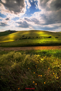 My fantasy in Val d'Orcia-Toscana-Italia  Two springs make '